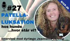 operationer for patella luxation hos hund med jeannette jalving dyrlæge gpcertsas