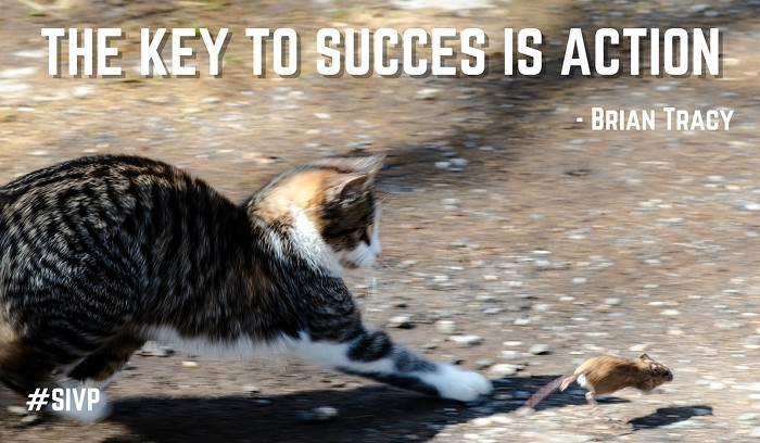 succes quote from brian tracy: the key to success is action