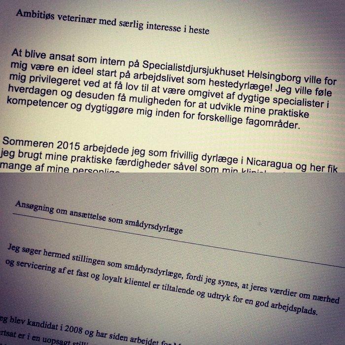 eksempel på indledninger på job ansøgning for dyrlæger