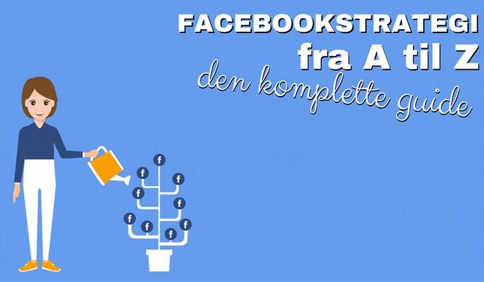 facebookstrategi