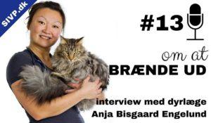 om stress og at brænde ud med dyrlæge anja bisgaard engelund