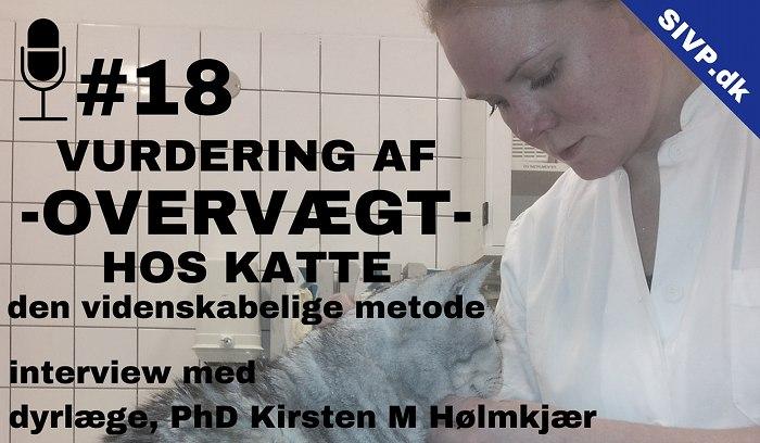 body condition score kat og dexa scanning for fedtprocent til vurdering af overvaegt hos katte kirsten holmkjaer
