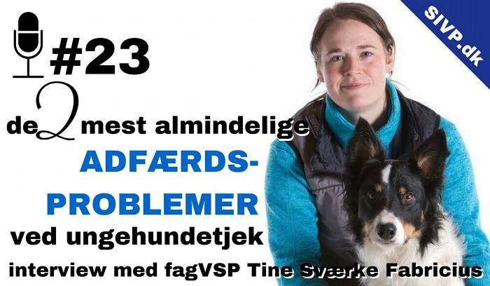 Tine Sværke Fabricius ekspert i hunde med adfærdsproblemer og træning