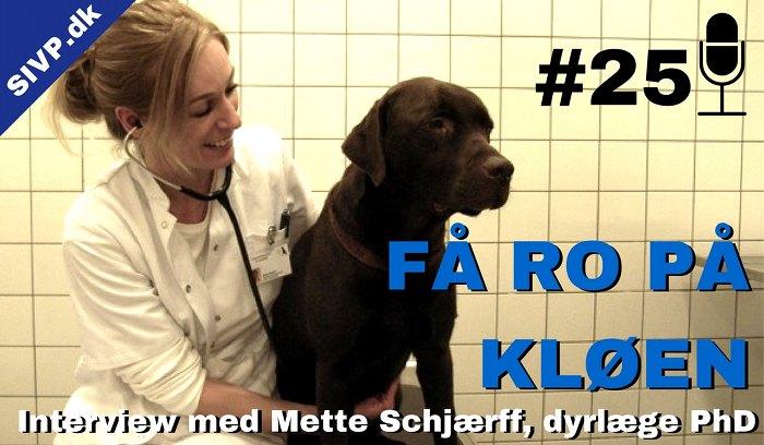 Billede af PhD dyrlæge Mette Schjærff med en hund. Vi snakker her om kløe ved foder allergi og atopi hos hunde