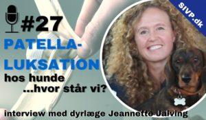 Dyrlæge Jeannette Jalving fortæller om forskellige operationer for patellaluxation hos hund