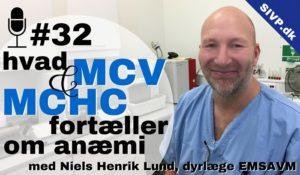 MCV (erytrocytvolumen) og MCHC tolkning ved anæmi dyrlæge niels henrik lund