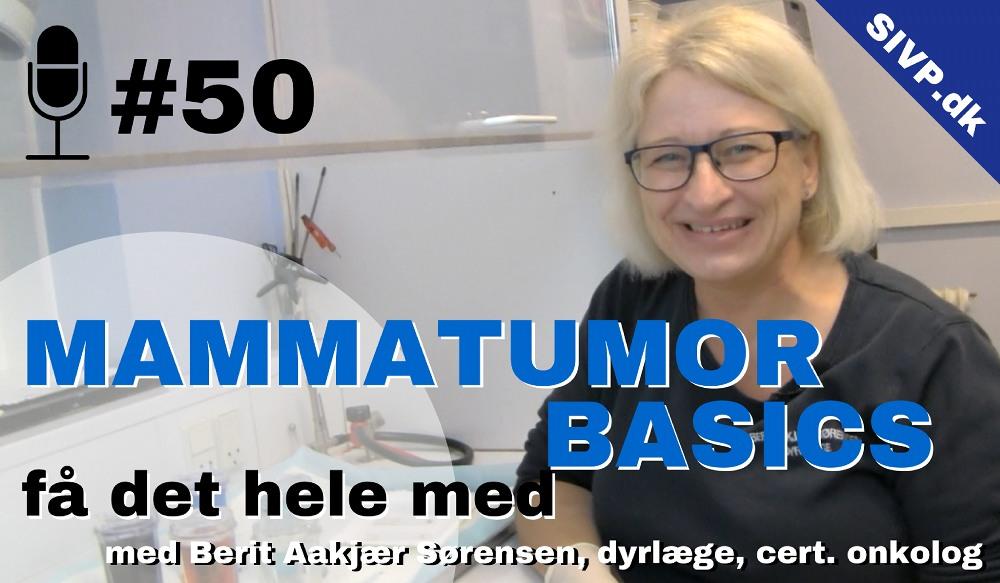 mamma cancer hos hund og kat med dyrlæge berit aakjær sørensen