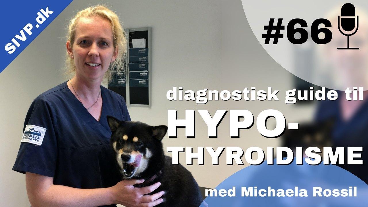 Hypothyroidisme (lavt stofskifte) hos hund kan give anledning til mange forskellige symptomer. Dyrlæge Michaela Rossil giver i denne podcast en diagnostisk guide samt et overblik over de mest almindelige tegn ved hypothyroidisme hos hund