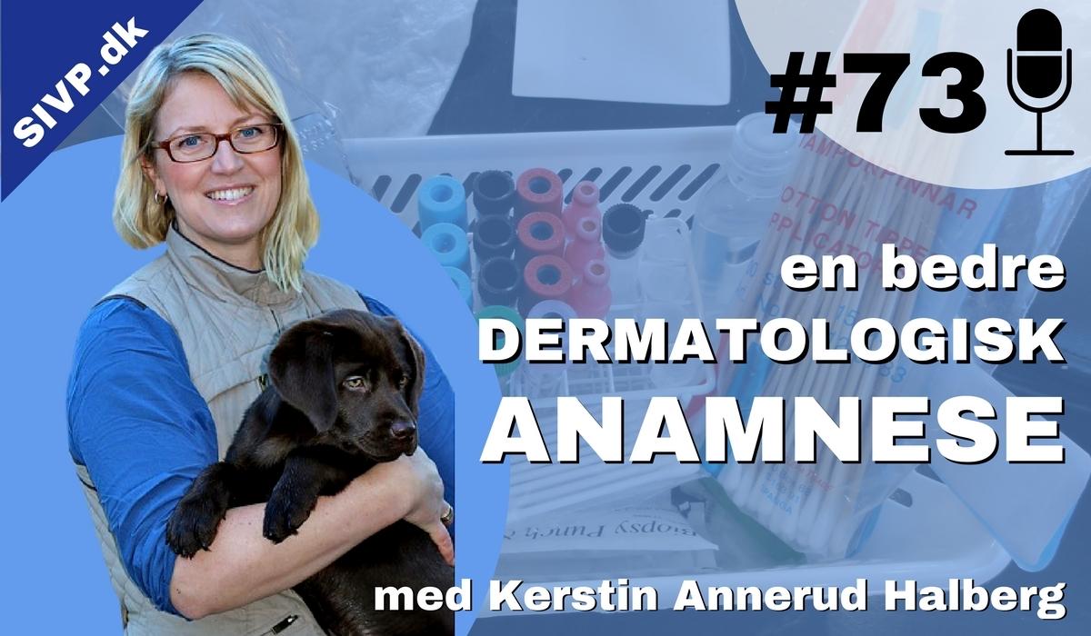 Tips til en bedre anamnese til den dermatologiske og kløende hudpatient