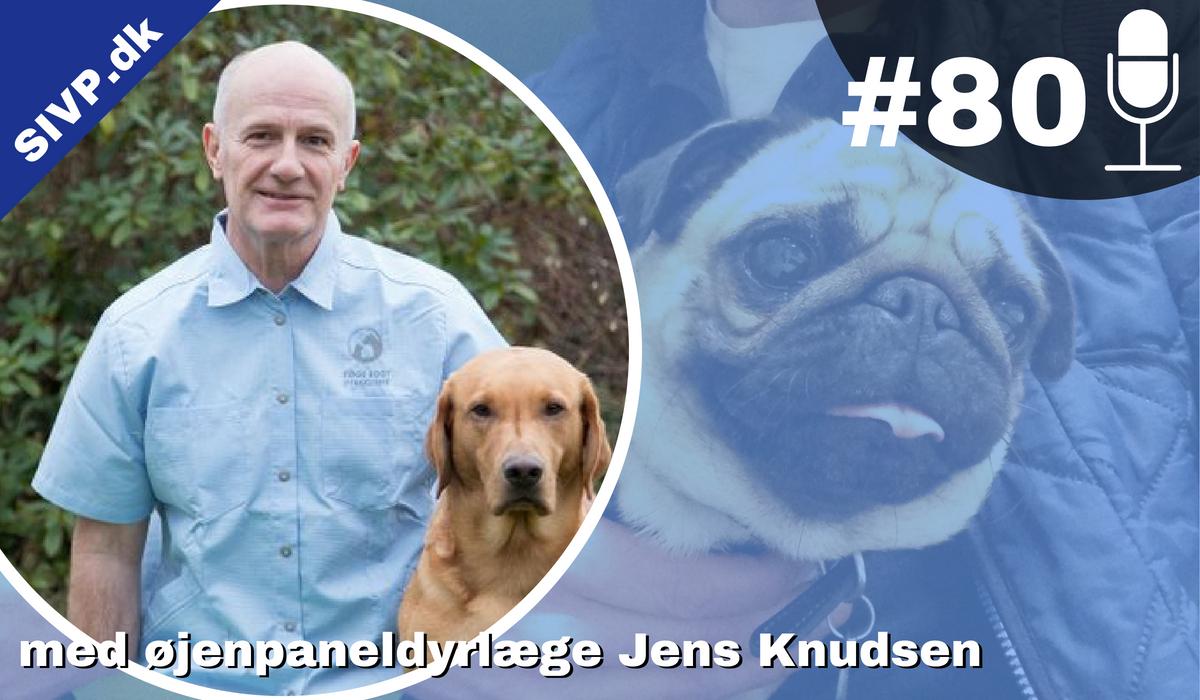 KCS hos hunde kan diagnosticeres med Schirmers tåre test og behandles med optimmune vet., fortæller jens i denne podcast