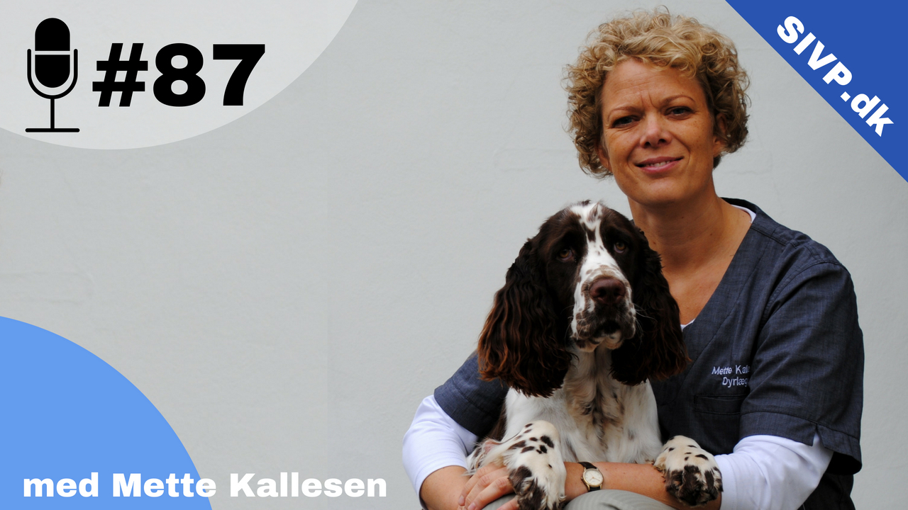 Mitralklapinsufficiens behandles med forskellige typer af hjertemedicin, herunder pimobendan og vanddrivende, fortæller Mette Kallesen i den her podcast