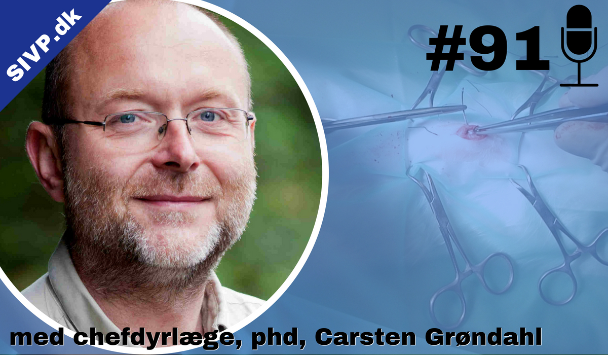 Dyrlæge Carsten Grøndahl er ophavsmand til Zoletil-blandingen til bedøvelse af katte, men han har også forslag til andre alternativer, der bl.a. giver en kortere opvågning